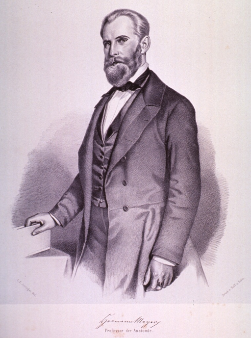 <p>Standing, three quarter length, left pose, one hand on table.</p>