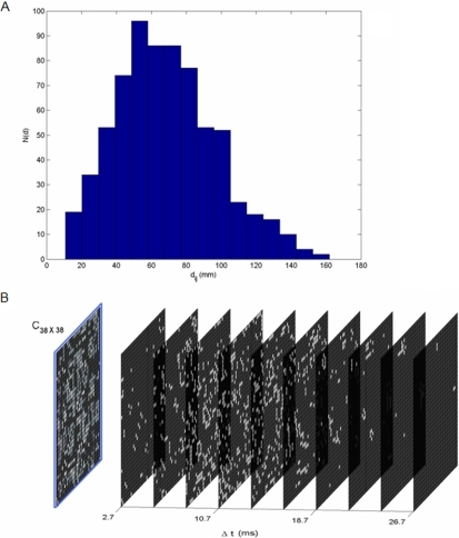 Space time structure of couplings.(A) Distribution of inter-area distances. The time-delays follow identical distribution as we have defined , where v is the propagation velocity. (B) Space-time distribution of time-delays. The blue frame shows the spatial connectivity matrix. The nodes having time delay Δt±1.3 ms are snapped to planes denoting time delay Δt for visual clarification. Here we set propagation velocity v = 6 m/s.