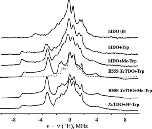 1H ENDOR spectra for cryoreduced oxy hIDO (species B) and ternary complexes of oxy IDO, XcTDO, and oxy H55S XcTDO with Trp, Me-Trp, and 5F-Trp. Instrument conditions: T = 2 K; microwave frequency, 34.95 GHz; modulation amplitude, 2 G; rf power, 5 W; rf sweep rate, 0.5 MHz/s; rf broadening, 60 kHz; 20 scans.