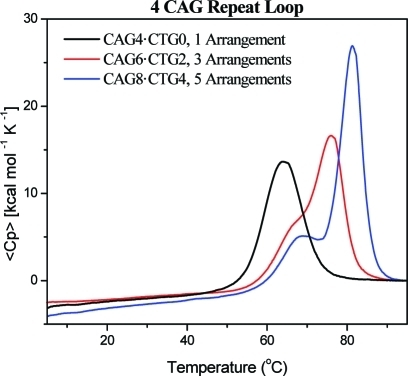 Excess heat capacity curves measured for a repeat loopconstructcomposed of four CAG repeats located in a fixed position (black) ordistributed between three (red) or five (blue) equivalent loop positions.Similar results were obtained for different CAG loop sizes and forCTG repeat loops in multiple equivalent loop positions.