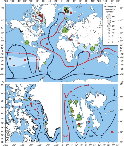 Global and regional maps show the sediment sampling sit open i global and regional maps show the sediment sampling sites and selected major ocean currents gumiabroncs Choice Image