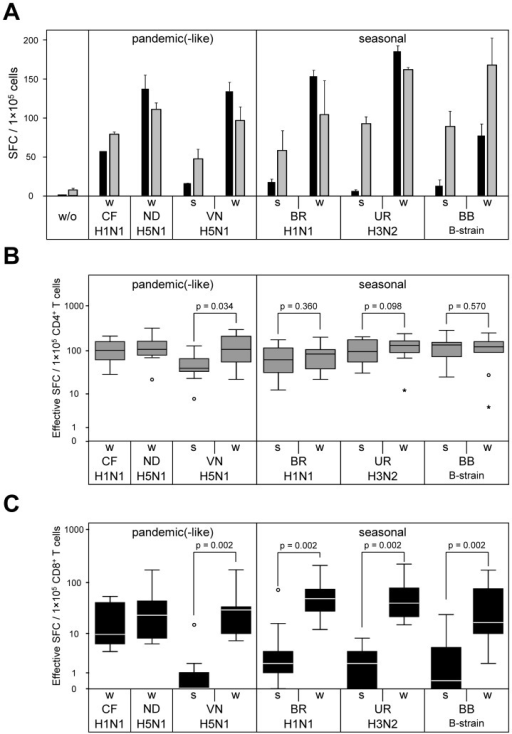 CD8+ T-cell reactivity to whole virus is superior compared to split virus preparations.CD4+ and CD8+ T cells purified from PBMC of healthy individuals were screened for IFN-γ ELISpot reactivity to autologous DC pre-loaded with 10 µg/mL of influenza whole virus and related split virus vaccine formulations. DC also received maturation cytokines during vaccine pulsing. (A) Representative data obtained from donor HD20 with 1×105 CD4+ T cells (grey columns) or 1×105 CD8+ T cells (black columns) plated per well are shown. (B, C) Reactivity to influenza whole virus and related split virus vaccines were measured in 10 randomly selected healthy individuals as described in (A). Box plot diagrams include IFN-γ ELISpot data from purified CD4+ (B) and CD8+ (C) T cells. Effective SFC were determined by subtraction of background spot numbers (w/o vaccine) from spot numbers induced by each individual vaccine. P-values were calculated by two-tailed paired-sample Wilcoxon signed-rank test.