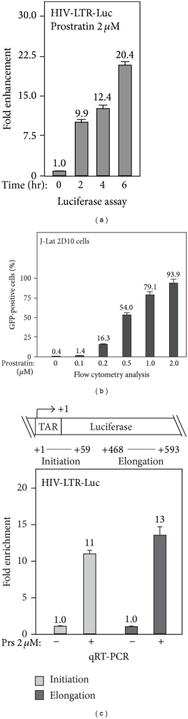 Prostratin enhances the transcription initiation of latent HIV-1 provirus. (a) Time course of prostratin-induced HIV-1 expression. HeLa cells with an integrated HIV-LTR-luciferase reporter gene (HIV-LTR-Luc) were treated with 2 μM of prostratin for 0–6 hrs, and the cell lysates were prepared for the detection of luciferase activity. The expression levels of luciferase gene were plotted based on 3 independent experiments, with the level of untreated cells set to 1.0. (b) Titration assay of prostratin-induced transcription activation of latent HIV-1 provirus. 2D10 cells, a Jurkat-based cell line containing the latent HIV-1 provirus with eGFP in place of Nef, were treated with indicated concentration of prostratin for 16 hrs. The GFP-positive cells were measured by flow cytometry and plotted as percentage of total cells based on 3 independent experiments. (c) Effect of prostratin treatment on transcription initiation and elongation of HIV-1. The schematics of the HIV-LTR-luciferase reporter gene (HIV-LTR-Luc) and the locations of qRT-PCR primers for detecting transcripts corresponding to the region of initiation (+1~+59, TAR) or elongation (+496~593, luciferase) are illustrated in top panel. HeLa cells with integrated HIV-LTR-luciferase gene were treated with 2 μM of prostratin for 4 hrs. The transcription levels were detected by qRT-PCR and plotted based on 3 independent experiments, with the level of untreated cells set to 1.0.