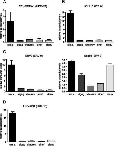 Down-regulation of HIV-1 induced HERV activity by siRNAs targeting HIV-1 transcripts. LC5-HIV cells were treated with the RNAiFect transfection reagent (mock), non-silencing siRNAs (sin.s.) or with siRNAs against gag (sigag), rev (sirev), nef (sinef) and env (sienv). Relative transcript levels of (A) HERV taxa S71pCRTK-1 (group HERV-T), (B) E4-1 (group HERV-E), (C) ERV9 and Seq59 (both group ERV9) and (D) HERV-KC4 (group HERV-K (HML-10)) were determined by qRT-PCR. The Y-axis shows the x-fold relative HERV transcript levels in LC5-HIV cells transfected with non-silencing siRNA (sin.s) and HIV-1-specific siRNAs (sigag, sitat/rev, sinef, sienv) referred to uninfected control cells. The data were normalized to the house-keeping gene RNA Polymerase II (RPII). Standard errors for triplicate experiments are indicated.
