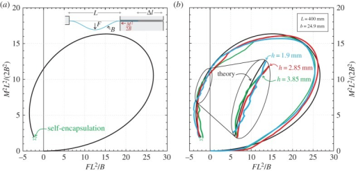 Dimensionless 'Eshelby-like' force M2L2/(2B2) versus dimensionless transverse load FL2/B. (a) Theoretical solution; (b) comparison between theoretical prediction (black curve) and experimental results performed on three rods differing only in the thickness h, h={1.9;2.85;3.85} mm (reported as blue, red and green curves, respectively). Note the self-encapsulation or dripping point.