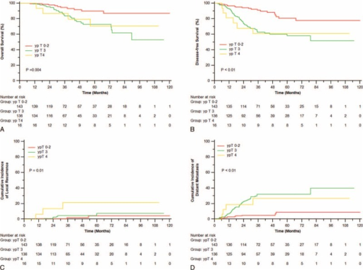 Overall survival (A), disease-free survival (B), incidence of local recurrence (C), and distant metastasis (D) of patients with different ypT.