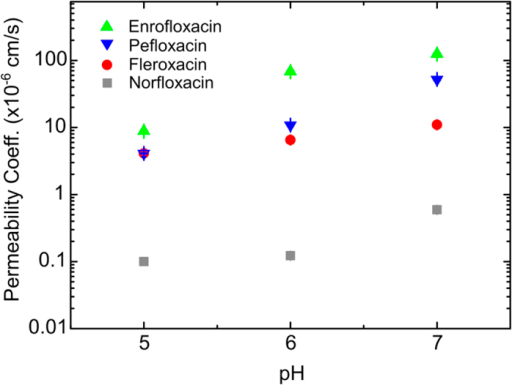 Comparison of the permeability coefficients (P) for the four fluoroquinolones studied as a function of pH.The error bars (s.e.) are smaller than the symbol size. The permeability coefficient values for norfloxacin at pH 5 and 7 are taken from Ref. 4. For all the molecules, the permeability increases as we increase the pH from 5 to 7. We find large differences in the absolute values of the permeability coefficients between the drugs; the permeability of enrofloxacin is approximately two orders of magnitude greater than that of norfloxacin, across the pH range studied. Norfloxacin has the lowest permeability of the drugs studied, while enrofloxacin has the highest.