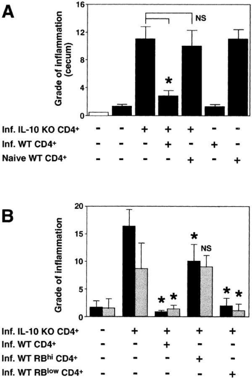 CD45RBlow CD4+ cells from H. hepaticus–infected WT mice protect RAG KO animals from colitis induced by IL-10 KO CD4+ cells plus bacterial infection. (A) H. hepaticus–infected RAG KO mice (solid bars) were inoculated with CD4+ cells from infected IL-10 KO mice and CD4+ cells from naive or infected WT mice as indicated (4 × 105 of each population). Intestinal pathology was analyzed 4 wk later. Naive (open bar) and infected RAG KO animals receiving no cells were included as controls. Bars represent mean histology scores ± SD of three mice per group except for groups receiving WT cells alone, in which case, due to limited cell numbers, only two mice per group were used. Similar results were seen in ascending colon (although histology scores were lower) and when disease was induced by the transfer of CD4+ cells from naive IL-10 KO mice (not depicted). (B) Infected RAG KO mice were given either no cells or CD4+ cells from infected IL-10 KO mice and CD4+, CD45RBhi CD4+, or CD45RBlow CD4+ cells from infected WT mice as indicated (4 × 105 of each population). Pathology in the cecum (solid bars) and ascending colon (gray bars) were analyzed 4 wk later. Bars represent mean histology scores ± SD of six or seven mice per group pooled from two separate experiments except for the group receiving IL-10 KO CD4+ cells plus infected WT CD4+ cells (n = 3), which was included in only one of the experiments. Statistical significance was tested for groups receiving IL-10 KO cells. *, P < 0.05 compared with mice receiving IL-10 KO cells alone.
