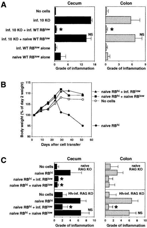 CD45RBlow CD4+ cells from naive WT mice are unable to protect RAG KO recipients from colitis induced by pathogenic T cells plus H. hepaticus infection. (A) Infected RAG KO mice were given either no cells or CD4+ cells from infected IL-10 KO mice and CD45RBlow CD4+ cells from naive or infected WT mice (4 × 105 of each population), and tissues were analyzed 4 wk later. Bars represent mean cecal (solid bars) and colonic (gray bars) histology scores ± SD of three mice per group. (B and C) Uninfected or H. hepaticus–infected (Hh-inf.) RAG KO mice were given either no cells or CD45RBhi CD4+ cells from naive WT mice and CD45RBlow CD4+ cells from naive or infected WT mice (3 × 105 of each population). Body weights were measured weekly and tissues were analyzed after 4 and 7.5 wk for infected and uninfected recipients, respectively. (B) Results shown represent mean body weights (expressed as a percentage of the weight 2 d after cell transfer) of four mice per group from the uninfected RAG KO recipients. No difference in body weight was observed between the four groups of infected recipients over the 4-wk time period that these groups were being followed (not depicted). (C) Bars represent mean cecal (solid bars) and colonic (gray bars) histology scores ± SD of three or four mice per group. Statistical significance was tested for groups receiving pathogenic cells. *, P < 0.05 compared with mice receiving infected IL-10 KO CD4+ cells alone (A) or naive WT CD45RBhi CD4+ cells alone (C).