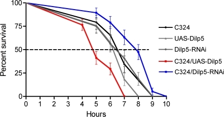 Manipulations of DILP5 expression in larval tubules also affect lifespan during stress.Over expression or knockdown of DILP5 in principal cells of feeding third instar larvae also affects survival at metabolic stress. Larvae were kept without food on a wet filter paper. Experiments run in triplicate. Knockdown by C324/Dilp5-RNAi increased median lifespan by almost 25% (P<0.01 to both controls; Log rank test; n = 30 for the different genotypes) and over expression by C324/UAS-Dilp5 decreased lifespan by the same amount (P<0.001 to both controls; n = 30 for the different genotypes).