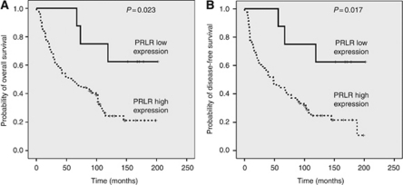 Kaplan–Meier plots for overall survival (A) and disease-free survival (B) in patients with SCCHNs with low vs high PRLR expression.
