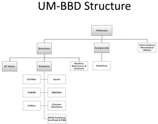 Structure of the UM-BBD. A solid box is UM-BBD information; a dotted box is information from one or more links to an external database.