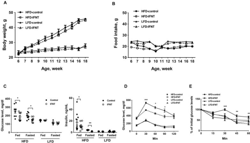 Interferon tau (IFNT) alleviates high-fat diet (HFD)-induced insulin resistance.Body weight (A) and food intake (B) of mice were monitored during a 12-week feeding period (n = 9–10). (C) Concentrations of glucose and insulin in plasma of control or IFNT-treated mice fed a HFD or low-fat diet (LFD), or fasted for 16 h. (D) Glucose tolerance test (n = 6). (E) Insulin tolerance test (n = 6). Data are presented as mean ± SEM. *P<0.05, **P<0.001, ***P<0.0001.