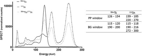 Energy spectra of99mTc,111In and the PP and BG windows used during image reconstruction.