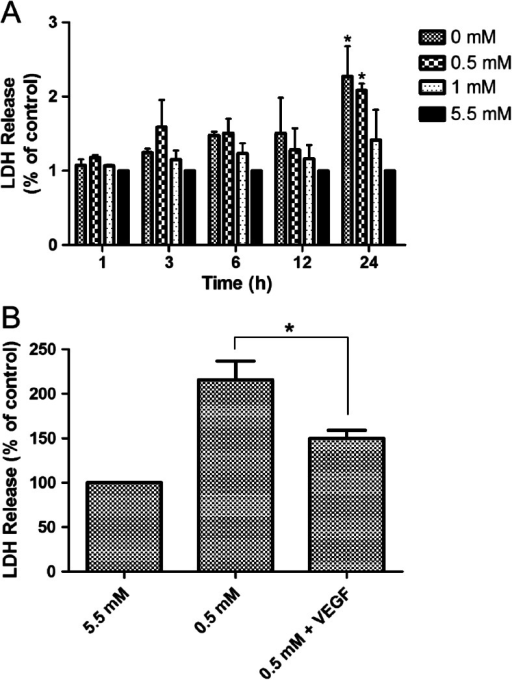 Effects of hypoglycemia and VEGF treatment on cell viability. (a) Cells were maintained in 5.5 mM glucose (control) or 0, 0.5 and 1 mM glucose for the indicated times. The results are given as a percent relative to the control. (b) VEGF (100 ng/mL) was added to cultures at the onset of exposure to 0.5 and 5.5 mM (control) mM glucose medium for 24 h. Cell viability was determined by the LDH assay. Data are expressed as mean ± SEM. N = 3. *P < 0.05, **P < 0.01