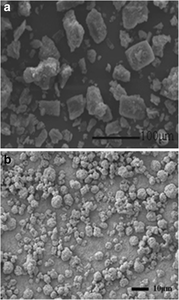 a SEM images of bulk curcumin. b SEM images of curcumin-DPIs