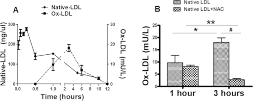 Native LDL conversion to ox-LDL in vivo.After a single injection of human native LDL to C57BL/6 mouse, the serum levels of native LDL and ox-LDL were determined at different time points. The native LDL level reached the peak in 5 min and stayed at a significantly elevated level for 1 hour, then gradually decreased to undetectable level in 10 hours. A measurable level of ox-LDL was detected 30 min after intravenous administration of native LDL. The serum ox-LDL level reached the peak in 3 hours, then started to decline, but stayed at detectable level until shortly after the disappearance of native LDL (A). The peak serum ox-LDL level at 3 hours after native LDL injection was dramatically decreased in the animals with NAC treatment (B). *P < 0.01, n = 5; **P < 0.001, #P < 0.001, n = 5.