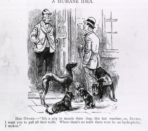 <p>Cartoon on hydrophobia; a dog owner wants to have his dogs' teeth pulled.</p>