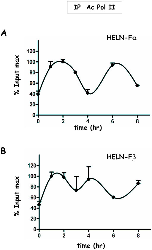 Recruitment of Pol II to the promoter of the luciferase transgene in HELN-Fα/β cells. Kinetic ChIP experiments were performed using anti-Pol II antibody. Chromatin samples were obtained and data processed as described in Figure 4. The corresponding amplitudes of variation are: in A (HELN-Fα) Imin = 1.5, Imax = 3.1; in B (HELNβ) Imin = 2.5 Imax = 3.0.