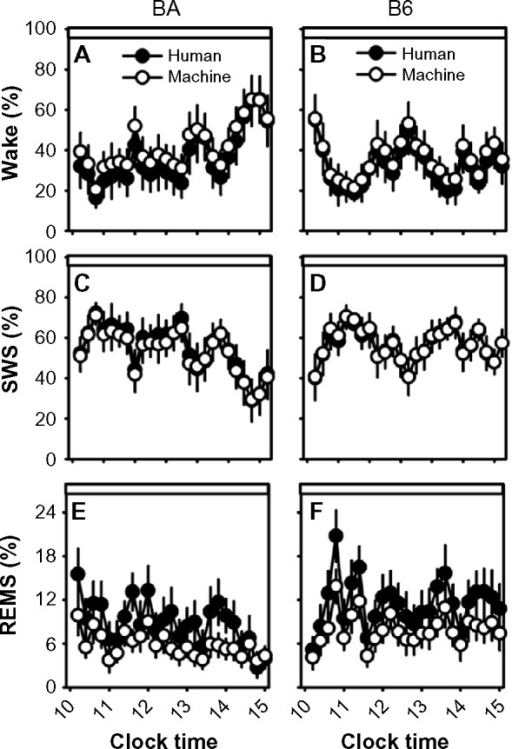 Sleep-state percentages in human-scored versus machine-scored 2-second epoch data.Notes: Data from the BA strain (left column) and the B6 strain (right column) were binned into 12-minute intervals. Graphs represent the percentage of each interval spent in wake (A and B), SWS (C and D), and REMS (E and F). Open circles represent machine-scored data and filled circles represent human-scored data. Data are from Zeitgeber time 4–9.Abbreviations: B6, C57BL/6J mice; BA, BALB/CJ mice; REMS, rapid-eye-movement sleep; SWS, slow-wave sleep.