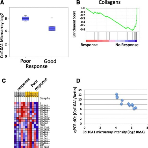 Association of colXα1 expression with NAC response. a Box plot of the Col10A1 probeset on the Affymetrix HTA 2.0 microarray distinguishes good and poor responding ER+/HER2+ breast tumors. The one outlier on the array, has an intermediate colXα1 IHC score of 1. b Gene Set Enrichment Analysis reveals enrichment of the Gene Ontology (GO) category, collagens, in pCR resistant ER+/HER2+ breast tumors. Each black line represents one gene in the GO collagen gene set. c Heat map of mRNA expression changes for all measured collagens on the microarray. d qPCR of Col10A1 mRNA expression correlates with the microarray data