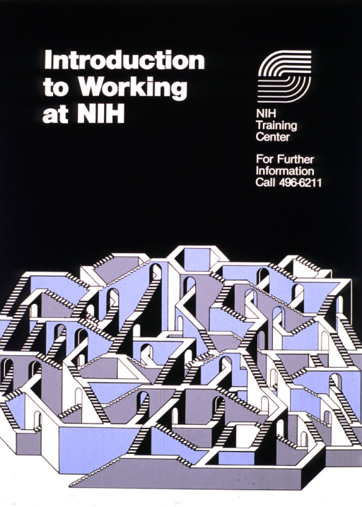 <p>The poster is in black, white, and light blue, the bottom half of it designed to look like a three-dimensional maze.  A phone number is listed for further information.</p>