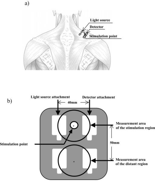 Measurement site and stimulation point (a) and measurement area and stimulation point (b).