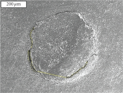 Scanning Electron Microscope picture of the resected root-end (x60) showing the gap measurement between the gutta-percha and the root canal wall using the ImageJ software.