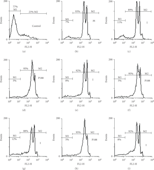 Flow cytometry of MDA-MB-231 cells. Experimental conditions: 5 · 105 cells per 100 μl suspension of 0.3 M mannitol, 0.1 mM Ca acetate and 0.1 mM Mg acetate. Field strength—1.0 kV  ·  cm−1, one pulse with a duration of 5 ms. 100 μM propidium iodide (PI) was added during the pulse or after it; (a) nonporated control with PI added; (b) porated control with PI added before the pulse; (c) porated control with PI added after the pulse; (d) and (e)  0.1 mM, (f) and (g) 0.5 mM, (h) and (i) 1.0 mM poloxamer 188 and 100 μM PI added; (d), (f) and (h) are samples electroporated in the presence of poloxamer 188 and PI; (e), (g) and (i) poloxamer 188 and PI were added after the pulse. The M1-marker represents the nonpermeable cells and the M2-marker—the permeable cells.