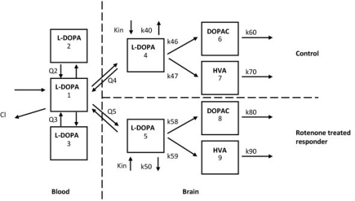 The population pharmacokinetic model for L-DOPA, DOPAC and HVA comprising of three compartments (1-3) describing the pharmacokinetics of L-DOPA in plasma, two compartments (4 and 5) describing the pharmacokinetics of L-DOPA in brainECF, one for the control cerebral hemisphere and one for the rotenone-treated responder cerebral hemisphere, two compartments (6 and 8) describing the kinetics of DOPAC in brainECF, one for the control cerebral hemisphere and one for the rotenone-treated responder cerebral hemisphere and two compartments (7 and 9) describing the kinetics of HVA in brainECF, one for the control cerebral hemisphere and one for the rotenone-treated responder cerebral hemisphere. (V = volume of distribution, Q = inter-compartmental clearance, k = elimination rate constant, Kin = endogenous formation rate constant of L-DOPA.).