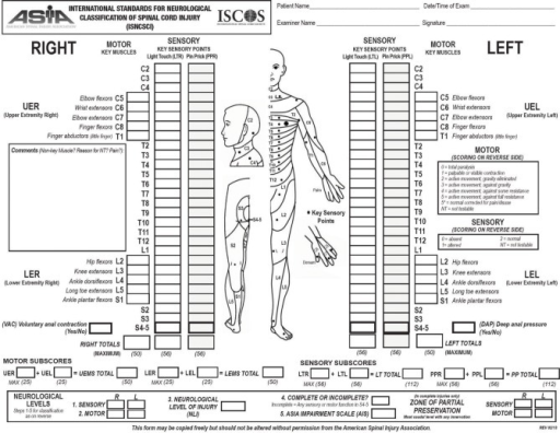 Scoring sheet for the International Standards for Neuro