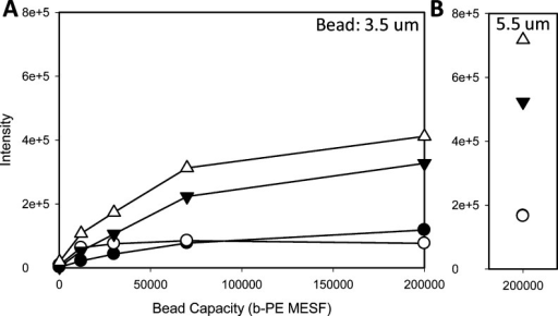Plots of median SERS intensity versus microsphere binding capacityfor 3.5 μm (A) and 5.5 μm (B) neutravidin beads stainedwith biotinylated SERS tags prepared from four different plasmonicnanoparticles: monodisperse Au rods (filled circles), aggregated Aurods (open circles), Ag@Au rods (solid triangles), and Ag plates (opentriangles).