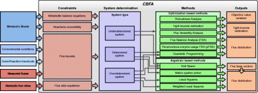 Overview of the application: on the left side, the inputs are represented; the centre box contains the different functional blocks of the application: the types of constraints, the determination of the system type and the supported methods; the right boxes represent the outputs of the methods.