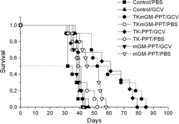 Survival of S37-bearing mice after injection of TK-PPT, mGM-PPT and TKmGM-PPT with or without ganciclovir. TKmGM (CMV-HSVtk-mGM-CSF-pGL3 construct), TK (CMV-HSVtk-pGL3), mGM (CMVmGM-CSF-pGL3); PPT - polyethylenimine-polyethylene glycol-TAT peptide copolymer; PBS – phosphate buffered saline (placebo); GCV – ganciclovir.