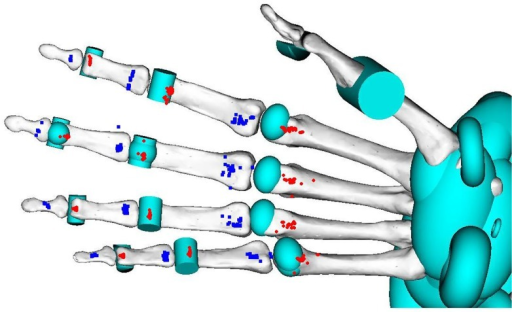 Muscle attachment points for modeled FDP muscles at the MCP, PIP and DIP joints.Red circles and blue squares denote proximal and distal points, respectively.