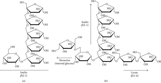 Structural comparison of the (a) inulin from Cichorium intybus and (b) agavin from Agave spp.