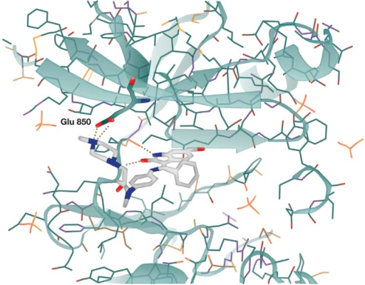 X-ray structure of nintedanib bound in the active site of the vascular endothelial growth factor receptor 2 crystal.Note: Reprinted from Cancer Research, 2008;68(12):4774–4782, Hilberg F, Roth GJ, Krssak M, et al, BIBF 1120: triple angiokinase inhibitor with sustained receptor blockade and good antitumor efficacy, with permission from AACR.18