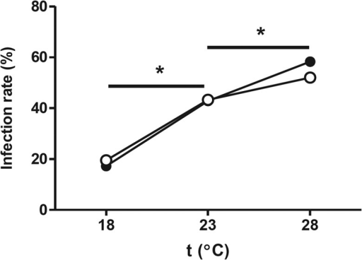 Higher temperatures increase WNV infection rate in Culex pipiens.Both NA (open symbols) and NWE (closed symbols) mosquitoes were orally infected with the WNV-lin2 isolate via a blood meal. Engorged mosquitoes were separated into three groups which were incubated at either 18, 23 or 28°C. The infection rate was determined 14 days post oral infections. Asterisks indicate significant differences (Fisher's exact test P<0.05).