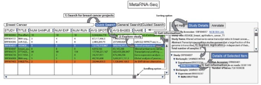 The MetaRNA-Seq web interface. On the left it has the search functionality for RNA-Seq studies. Below the search, the table contains all RNA-Seq study details, including name, title, number of samples, number of experiments, and number of runs, allowing one to quickly scroll through all of the studies. The table is filtered based on the search. The table can be sorted by double clicking any column. Upon clicking any study in the table, the study details are populated at the upper right. A tree-like data structure containing biosamples, experiments, and runs for the selected study is populated in the lower right.