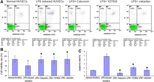 Cell viability and apoptosis. Cell viability was determined by MTT assay (b), and the apoptosis rate was determined with Annexin V-FITC/PI by flow cytometry (a and c). △P < 0.05, compared with normal HUVECs; ★P < 0.05, compared with LPS-induced inflammatory and injured HUVECs