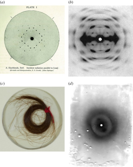 X-ray diffraction patterns from a point source. (a) Zincblende (ZnS) crystal diffraction, recorded by P. Ewald; image from The Crystalline State by W.H. and W.L. Bragg; (b) cellulose fibres, oriented vertically [7]; (c) a lock of Mozart's hair, and (d) α-keratin diffraction pattern, from Mozart's hair (oriented obliquely) by William Astbury's colleague, Elwynn Beighton, in 1958.