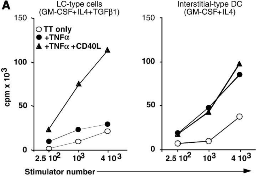 LC-type DCs cultured with TNF-α express CCR7 and migrate toward CCR7 ligands but are not functionally mature. (A) Autologous antigen presentation. LC-type cells (left) and DCi (right) unstimulated (open circles), or treated with TNF-α (closed circles) or CD40-activated LCs (closed triangles) were pulsed with TT. T cell proliferation was measured as indicated in Materials and Methods. Results are expressed as mean of triplicates in a representative experiment. SD were <20%. (B) Both SLC and ELC trigger migration of TNF-α and E. coli treated, but not control unstimulated LC-type cells. Day 6, LCs were treated for 48 h with TNF-α (10 ng/ml) or with heat-inactivated E. coli (50:1 ratio, right). Then, samples were recovered and cells were tested for their capacity to migrate in response to ELC (100 ng/ml) and to SLC (100 ng/ml). Migration assays were performed in Boyden microchambers. (Left) Results are expressed as number of migrating LCs per two low power fields (original magnification: ×20). (Right) Results are expressed as migration index compared with medium alone (without chemo-kine). Results are representative of more than three independent experiments. (C) CCR7 expression. Day 6, LC-type and DC-type cells were treated for 48 h with 10 ng/ml TNF-α. Cells were washed and stained with PE-conjugated anti-Langerin, FITC-anti-DR and anti-CCR7 or with isotype-matched controls antibodies and analyzed by flow cytometry. In the left panel, the dot-plot represent langerin and HLA-DR expression of LC-type cells treated with TNF-α. On the center and right panels histograms represent CCR7 expression on gated-cell populations (R1:Langerin1 DRlo; R2: Langerin-, DRhi). Thick lines represent the labeling obtained with CCR7 antibody and thin lines represent labeling with the isotype-matched control. Results are representative of two independent experiments.