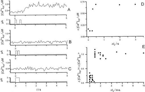Summation of subthreshold pulses for induction of a transient calcium rise. (A) One Chara internodal cell was stimulated by two subthreshold pulses to induce a transient calcium rise. (B) After reduction of the pulse interval to 100 ms (B) and 0 ms (C) the stimulation failed to induce a transient calcium rise. All pulses were 200 ms long. (D) Amplitudes of Ca2+cyt changes in response to dual subthreshold pulses as a function of the pulse interval for the cell shown in A–C. (E) Normalized data for experiments with four cells as in D. Normalization as in Fig. 5.