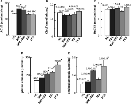 Levels of (A) AChE, (B) ChAT and (C) BuChE in cortical extracts from sham NL controls, BDL rats without and with HD (BDL + HD), HD without liver disease fed with an ammonium-containing diet for 1 week and PCS rats. (D) Plasma and (E) cerebral ammonia levels were also determined for each rat group. Values are means ± SEM. *P < 0.05, significantly different from NL group; there were no statistically significant differences between BDL and BDL + HD groups (at least n = 6 for each group).
