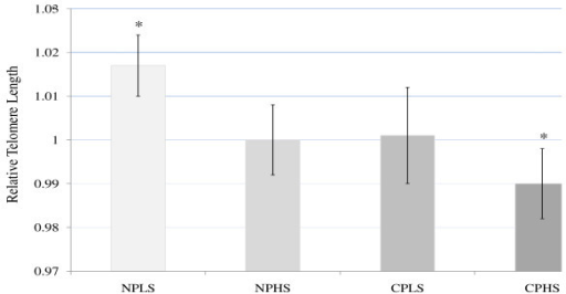 Relative Telomere Length (Estimated Mean) by Pain/Stress Groups after Adjustments for Age, Race, Waist-Hip Ratio (WHR), and WHR*Group Interaction. Mean and Standard Error: NPLS - no pain/low stress (1.017 ± .007) NPHS - no pain/high stress (1.000 ± .008). CPLS - chronic pain/low stress (1.001 ± .011). CPHS - chronic pain/high stress (.990 ± .008). Covariate values in the model: WHR, race, and age. *Significant at p < 0.05, Least Significant Difference (LSD).