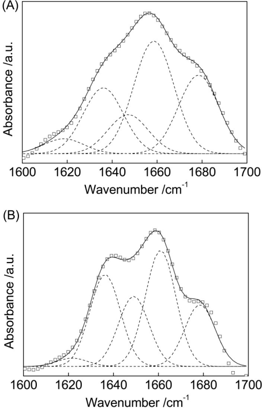 Amide I band peak fitting in the original FTIR spectra for Cyt c (A) and Cyt c/MWCNTs (B). The original envelope (□), the component bands (dashed line), and the generated envelope (solid line) are shown, respectively.