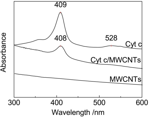 UV-vis absorption spectra of MWCNTs, Cyt c, and Cyt c/MWCNTs.