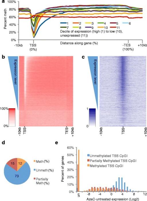relationship between gene finny microco