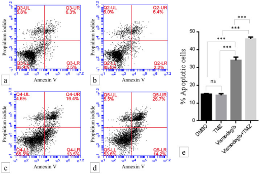 Flow cytometry analysis of annexin-V and propidium iodide (PI) staining of apoptotic cells following vismodegib (50 μM) and TMZ (50 μM) treatment to B0048 neurosphere.a), DMSO-treated control, b), TMZ treatment alone, c) vismodegib treatment alone, d), TMZ treatment along with vismodegib treatment and e), showing % of apoptotic cells (annexin-V positive + PI positive + annexin-V and PI double positive cells). (✶ p-value < 0.05, ✶✶ p-value < 0.01 and ✶✶✶ p-value < 0.001).