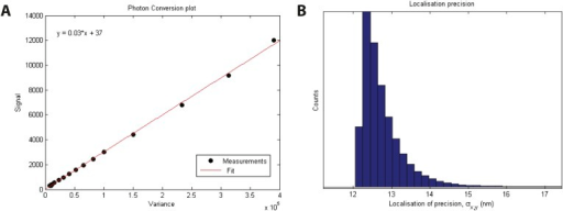 Localization precision.(A) Calibration of EMCCD camera for photon conversion factor. (B) Histogram of calculated localization precisions from dSTORM image data. The median value of localization precision (positional error) is 12 nm.DOI:http://dx.doi.org/10.7554/eLife.04052.008